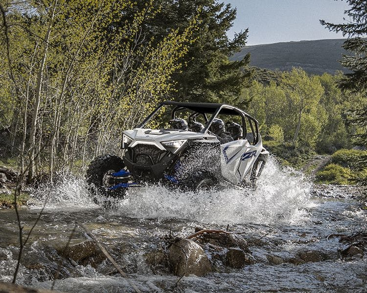 Best Bear's Off-Road Adventures