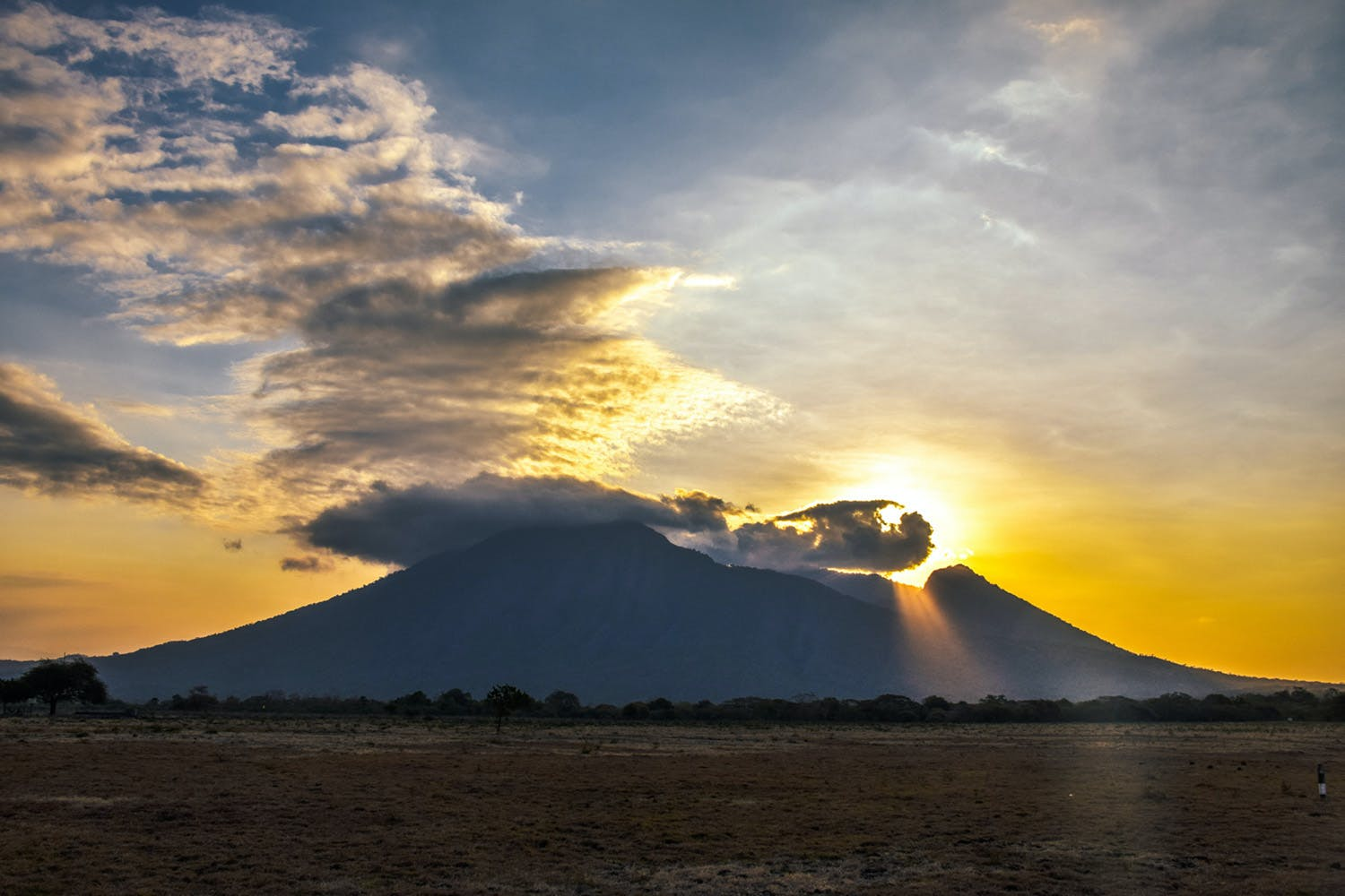 Bangsring Breeze tours to the nearby Baluran National Park