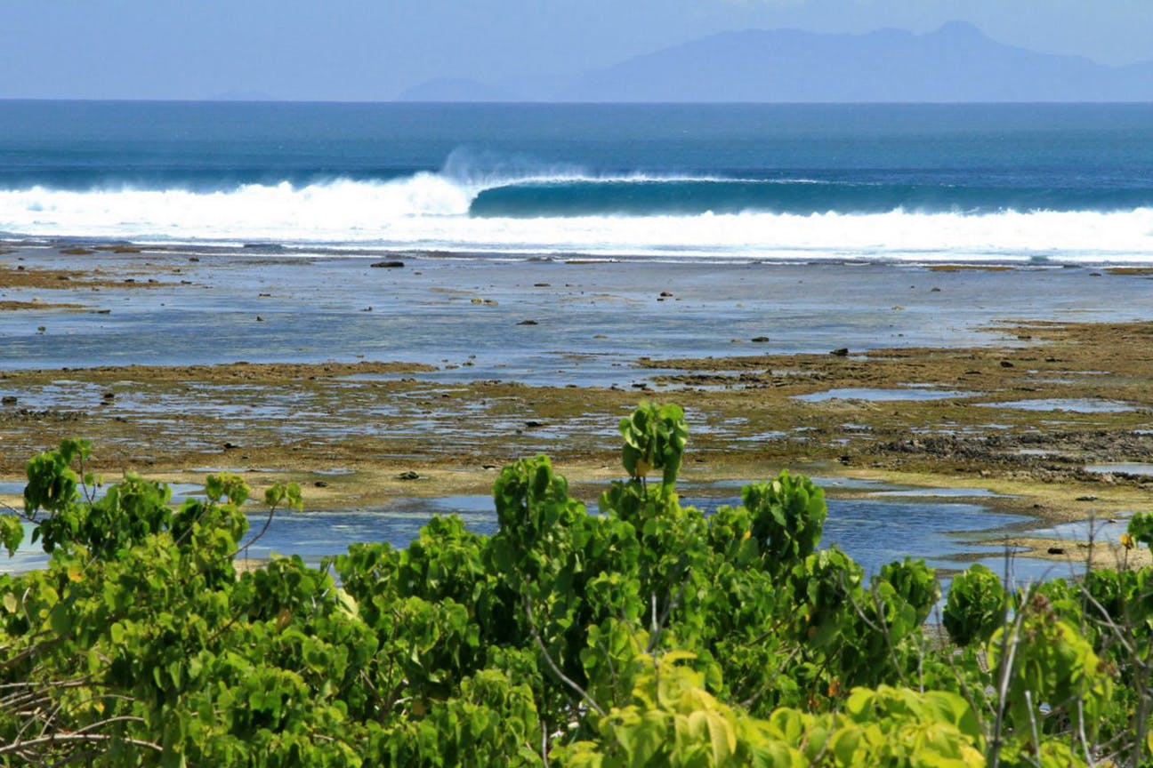 Bangsring Breeze surfing trips to G-Land in the Alas Purwo National Park