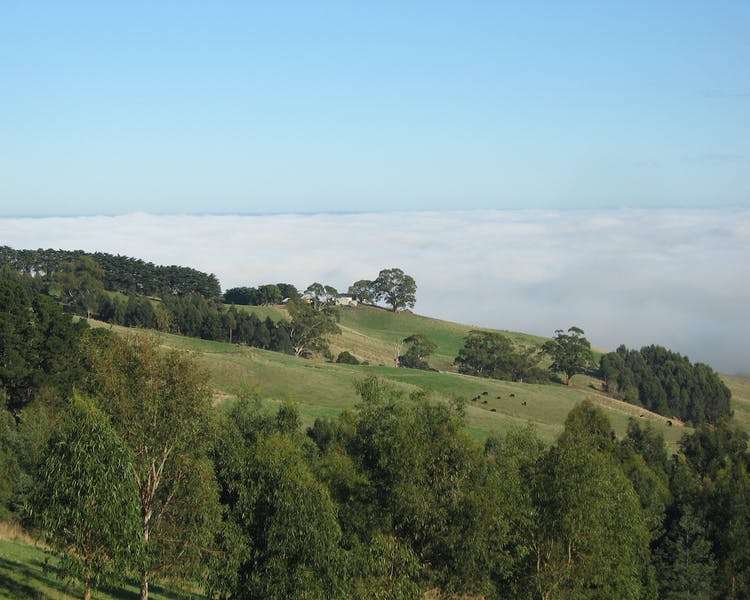 Stunning views in beautiful West Gippsland at Anderley