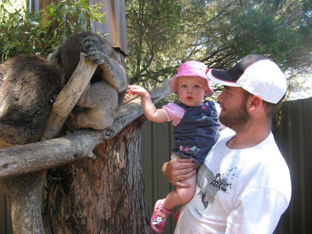 # Kangaroo Island Wildlife Park up close with Koalas