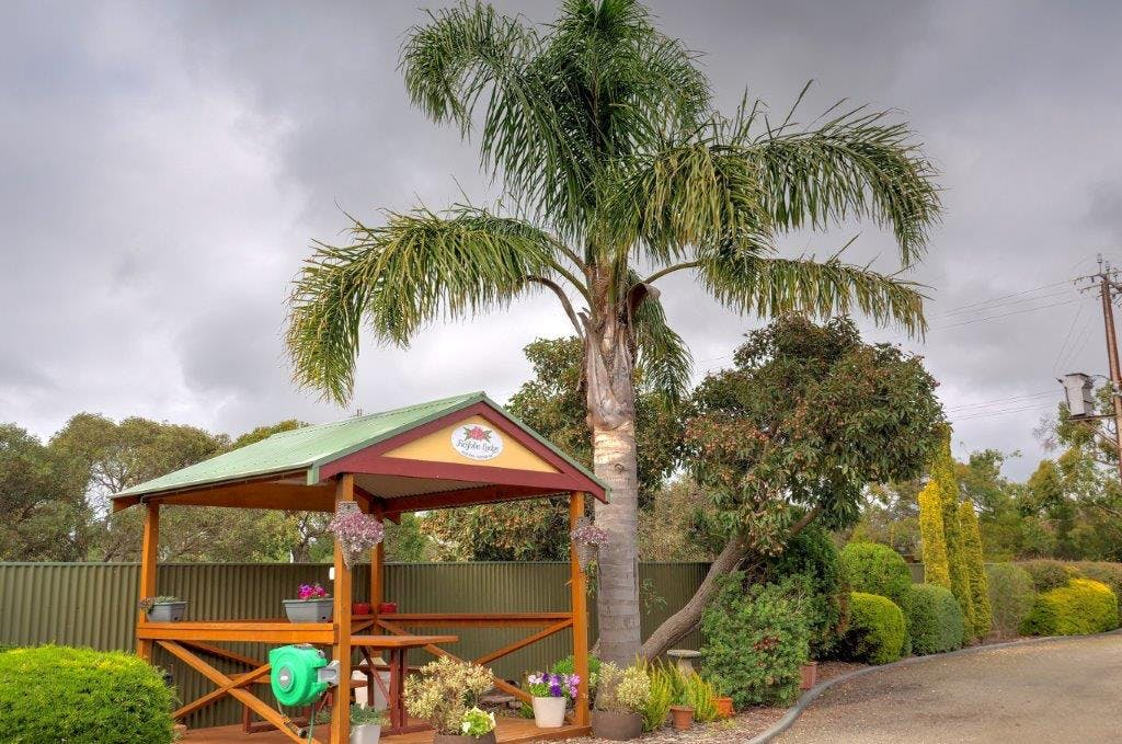 #Gazebo to relax in at Ficifolia Lodge