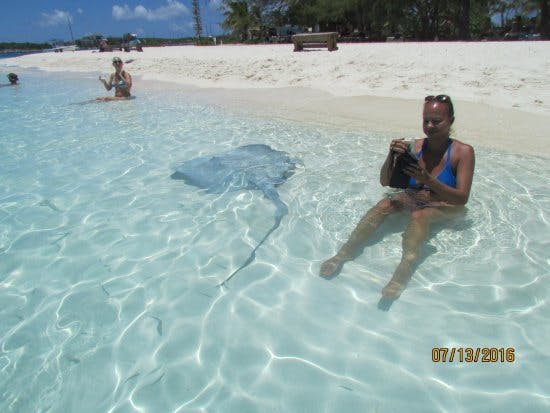 chillin' with sting rays