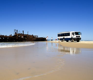 Fraser Island is a must see when visiting Hervey Bay. The iconic Maheno shipwreck is a favourite stop on all tours.