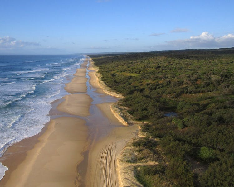 Fraser Island is a must see when in Hervey Bay