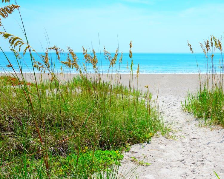 Sand Key Park