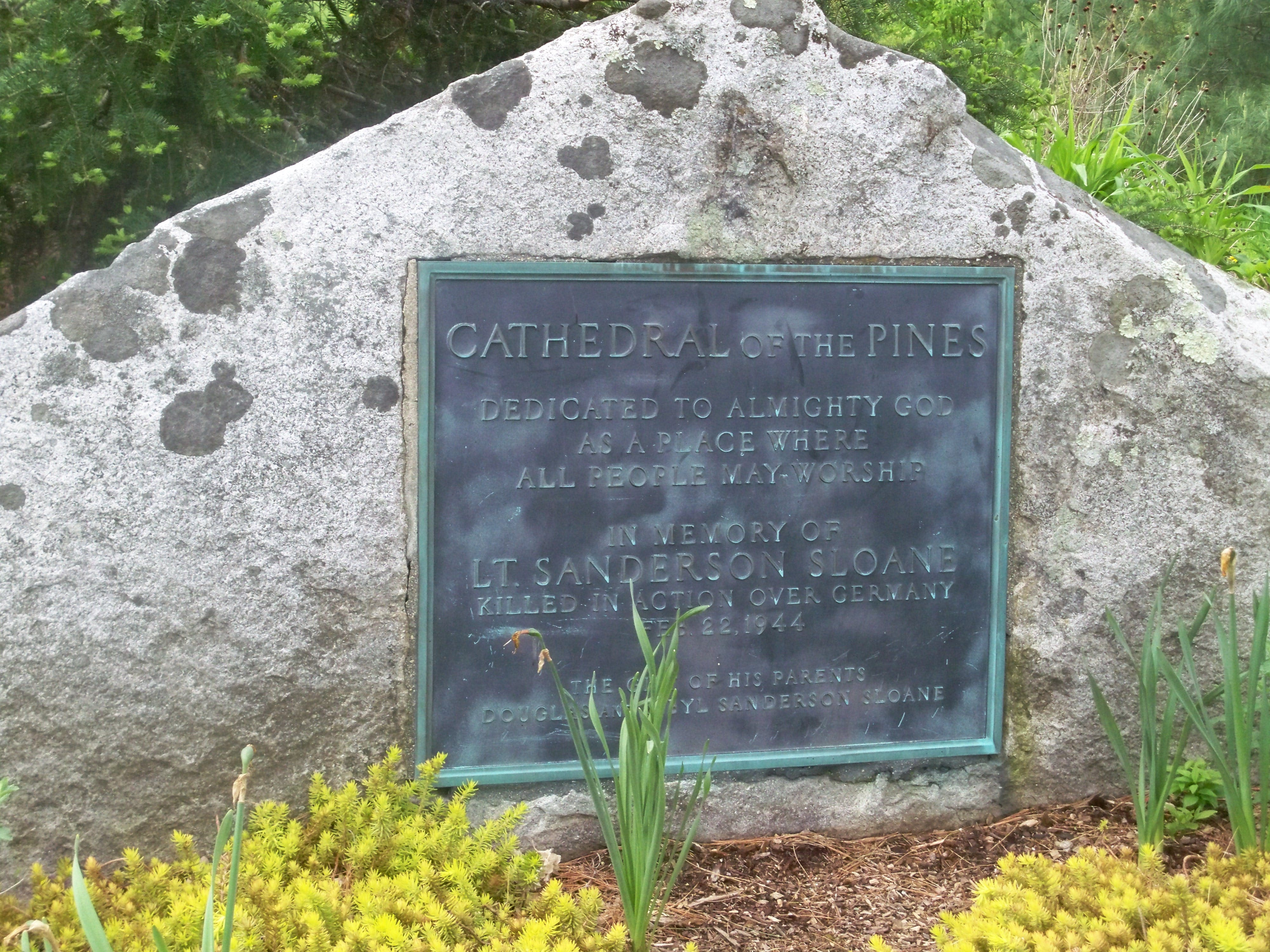 Visit Cathedral of the Pines