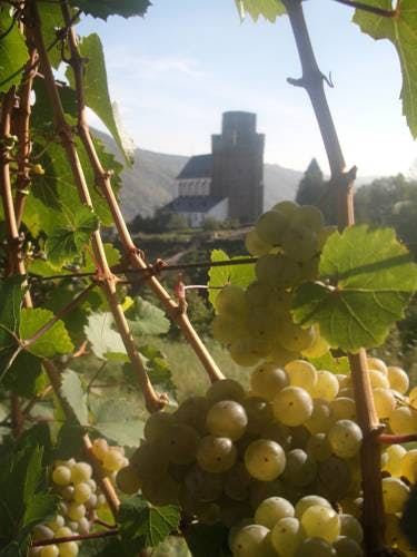 St. Martin in Oberwesel im Herbst
