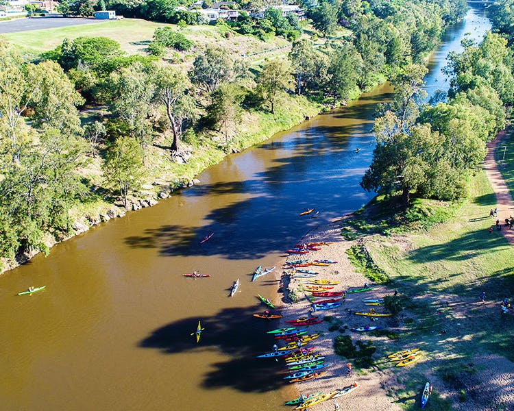 Explore the Macquarie River by kayak and savour the experience. Take in the many beautiful sights along the way.