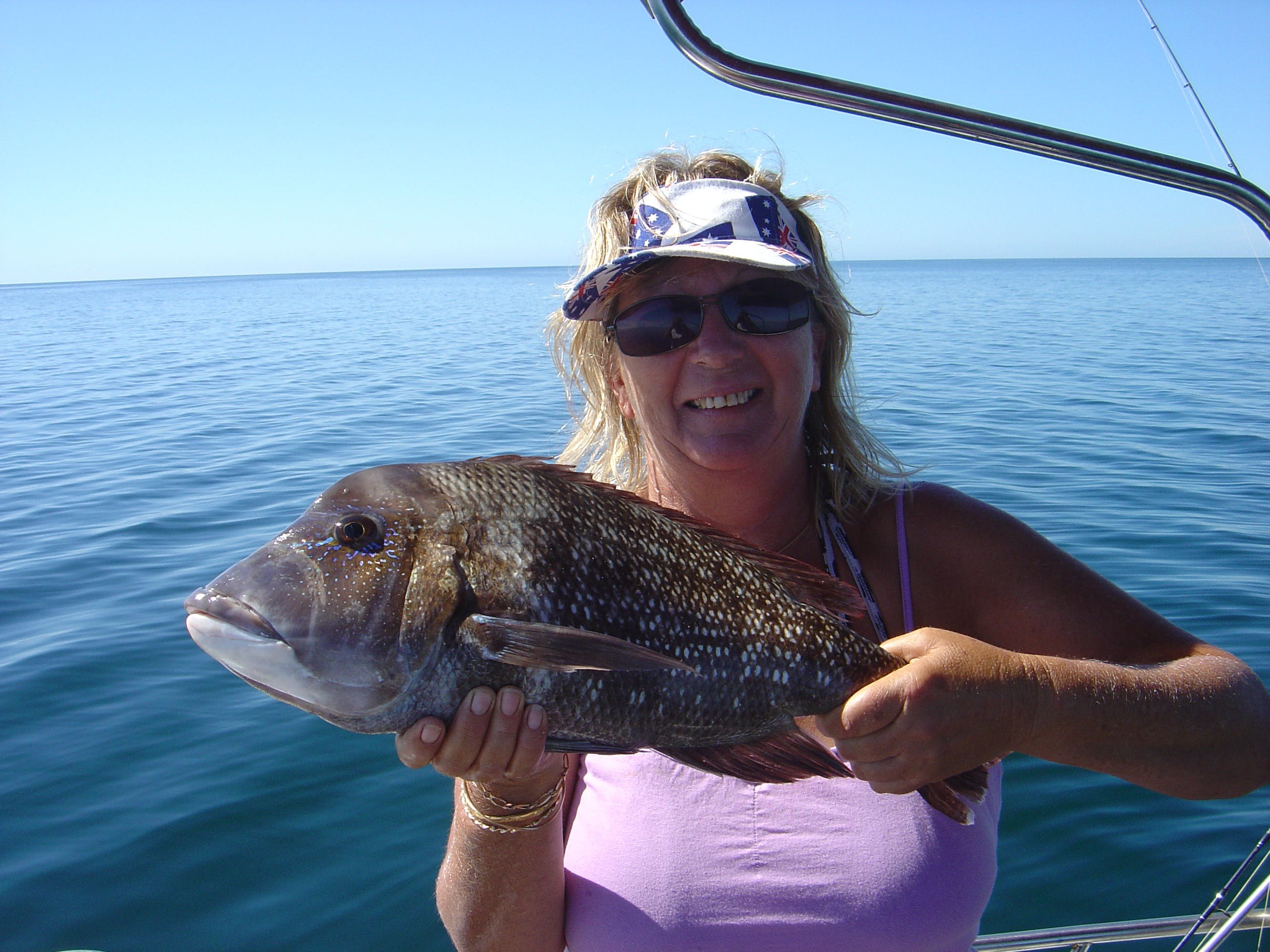Black Snapper or blue lined emperor