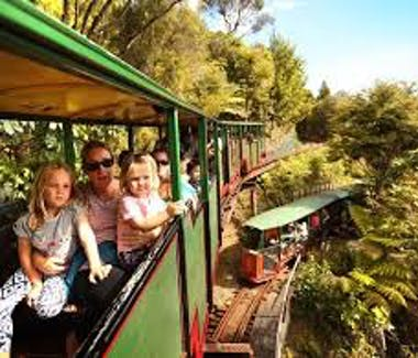 Driving Creek Railway train journey