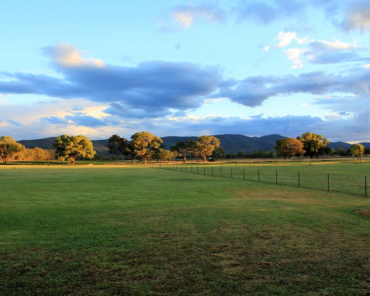 View across Paddock to Wyberba Hills from Radiance on Lyra.