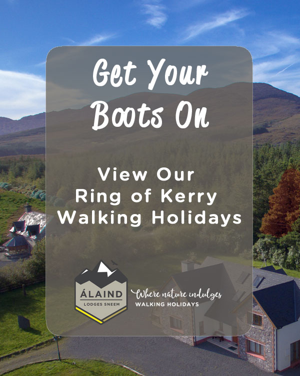 View our Ring of Kerry Walking Holidays