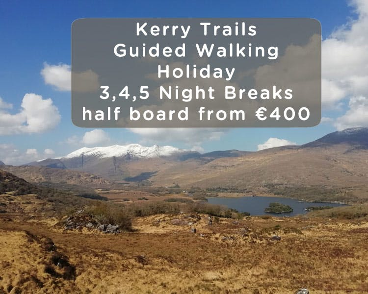 Guided Ring of Kerry Walking Holidays at Alaind Lodges