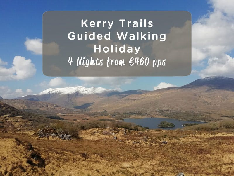 Guided Ring of Kerry Trails Walking Holidays at Alaind Lodges