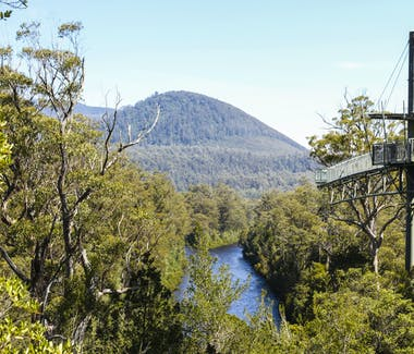 Tahune Airwalk Huon Valley Tasmania 40 mins from Hillside Bed & Breakfast