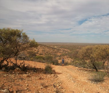 Bush walking at Warroora.