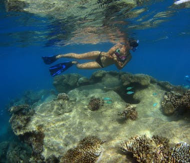 Snorkeling at Warroora.