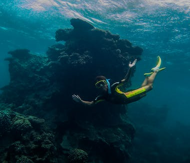 Warroora snorkeling Ningaloo Reef.