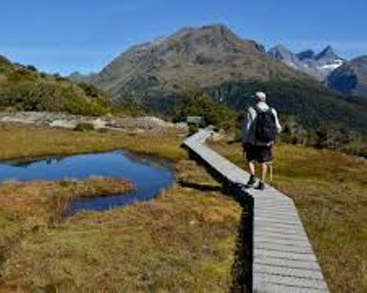 Key Summit walk Milford road