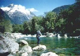 Fishing in Fiordland