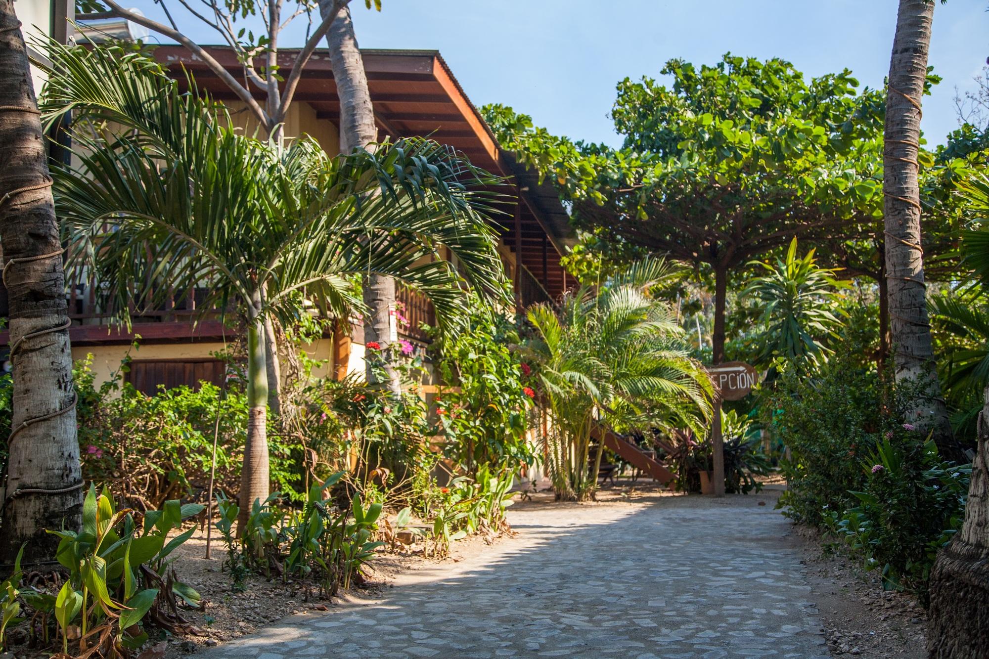 Home   Hotel Brasilito