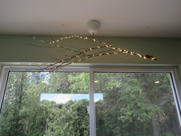Elmira Suite - branch chandelier