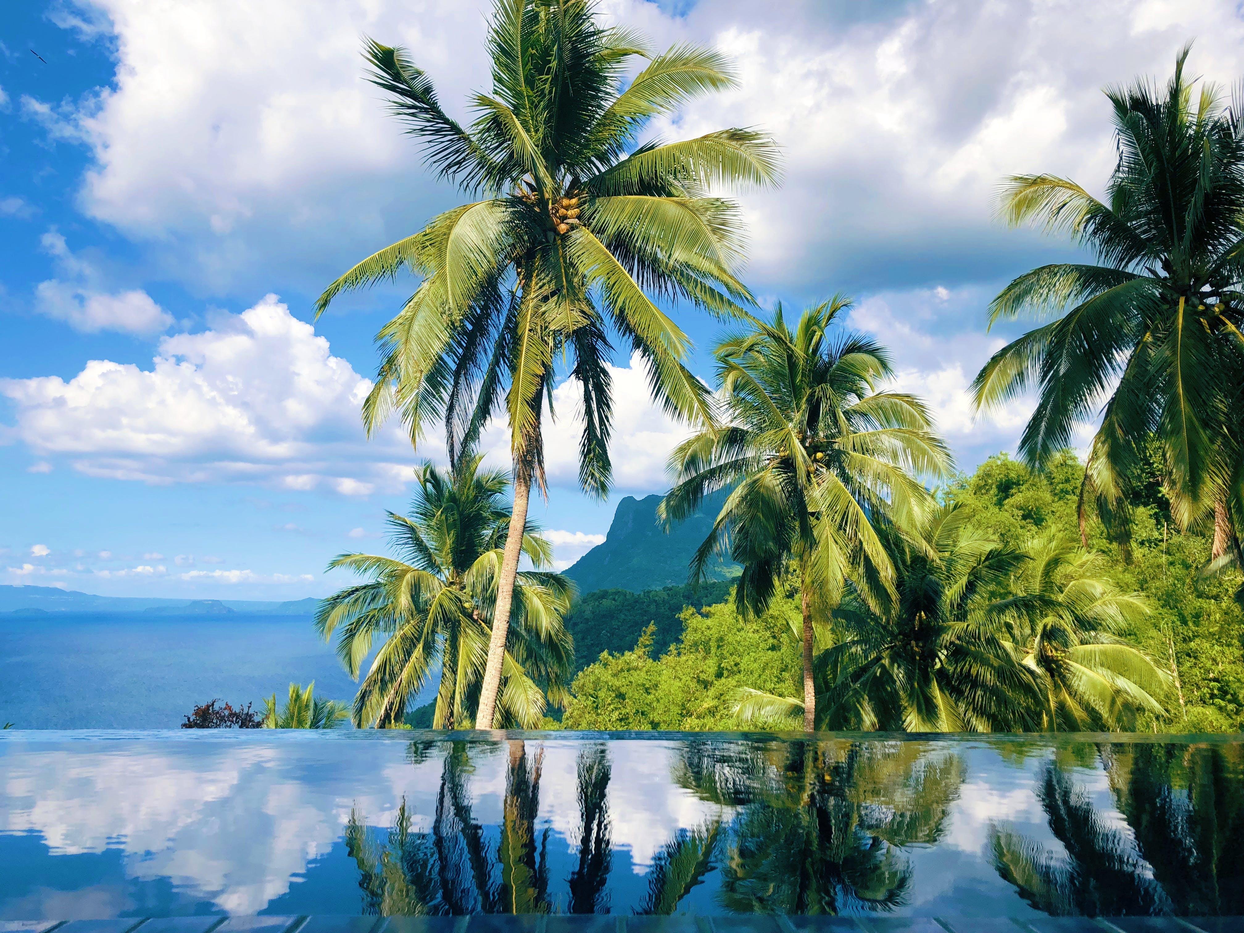 Home | Noni's Resort