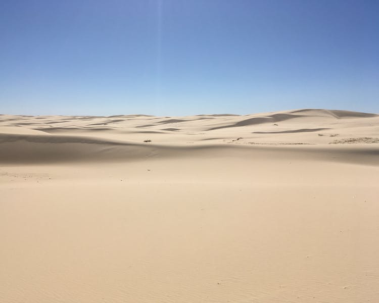 The Sand dunes of Birubi and Stockton beach. The largest sand dunes in the southern hemisphere.