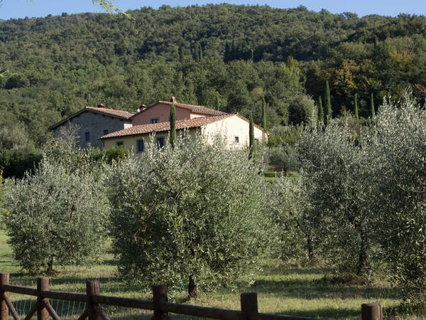 Casa Portagioia Tuscany bed and breakfast , through olive groves