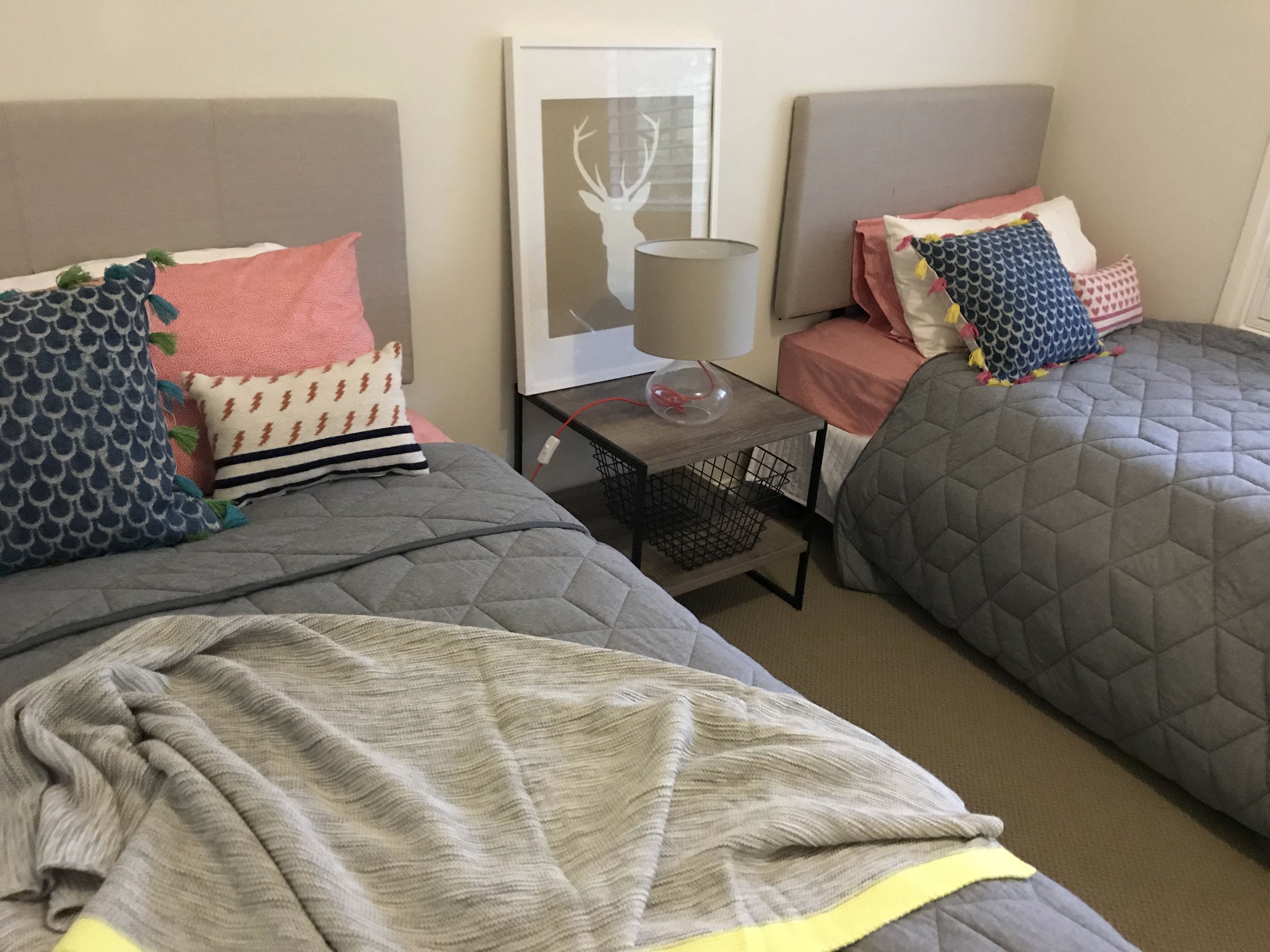 Gracefield House single bedroom sleeps 2 comfortably. Perfect for the kids!