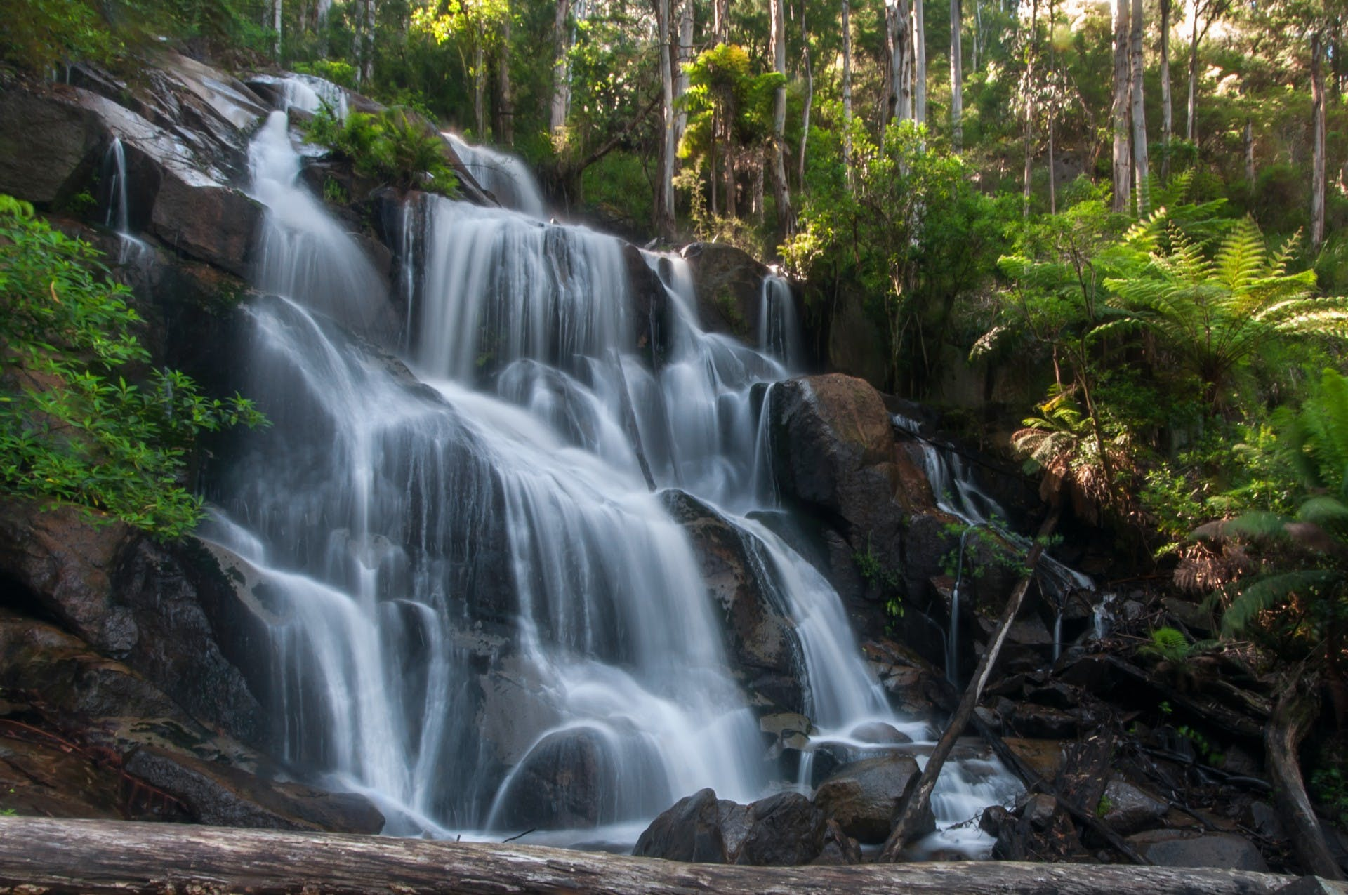 Tooronga Falls is worth a visit and only a short drive from Gracefield Estate.
