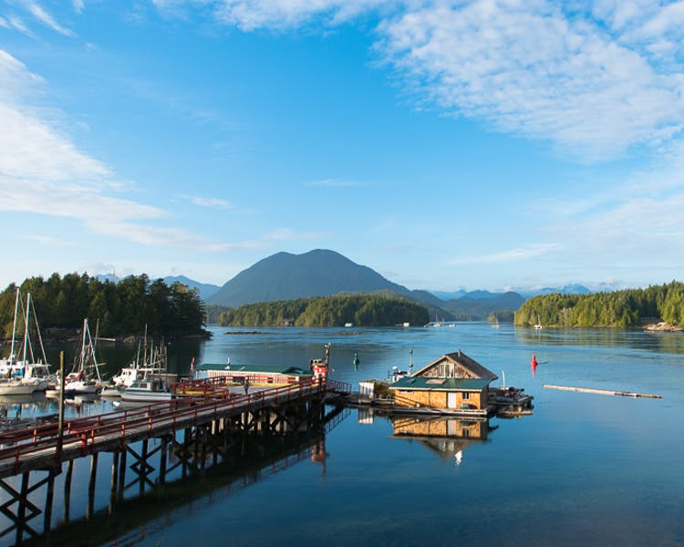 The Shoreline tofino views boutique hotel