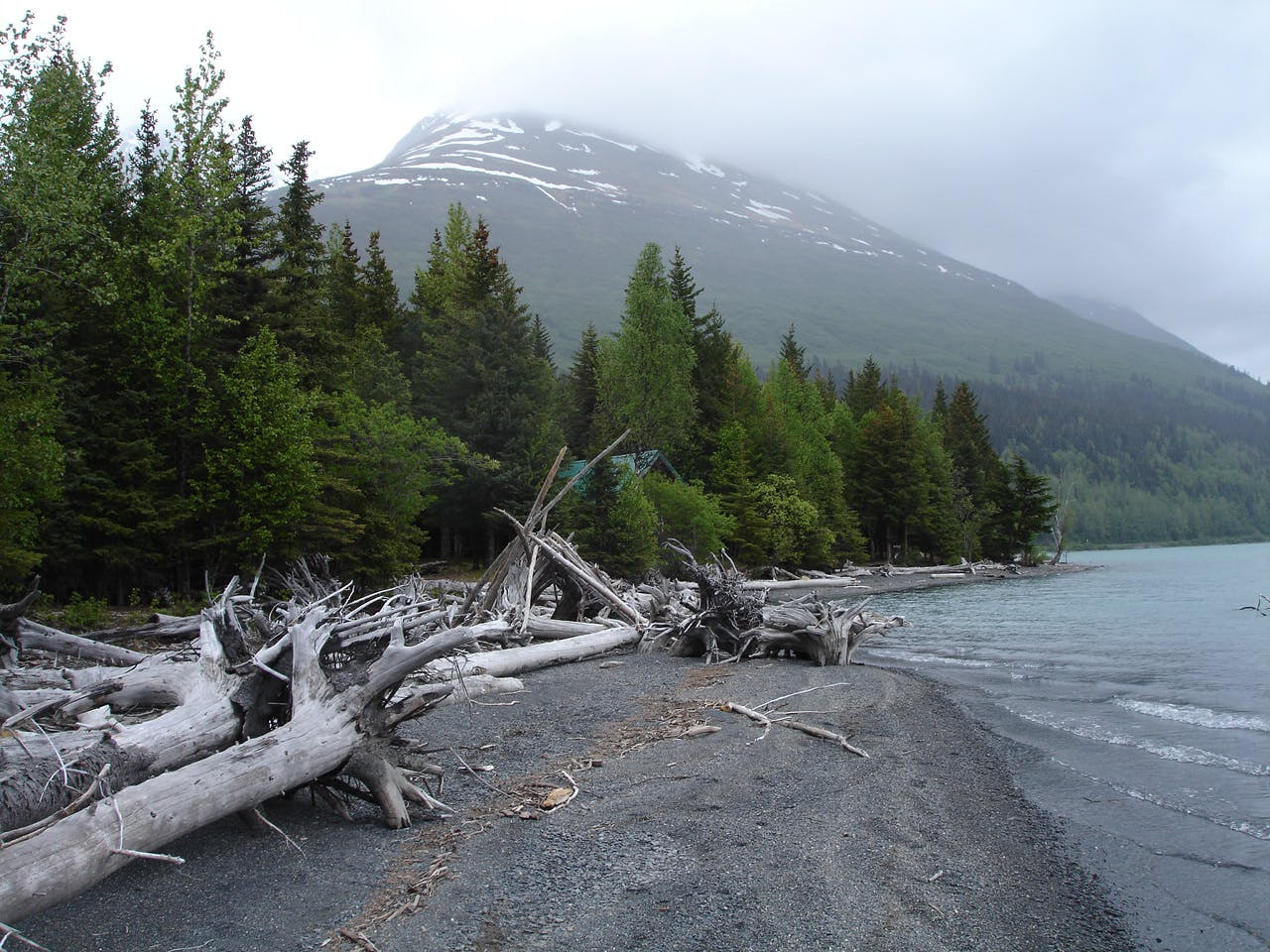Driftwood Fort on Kenai Lake