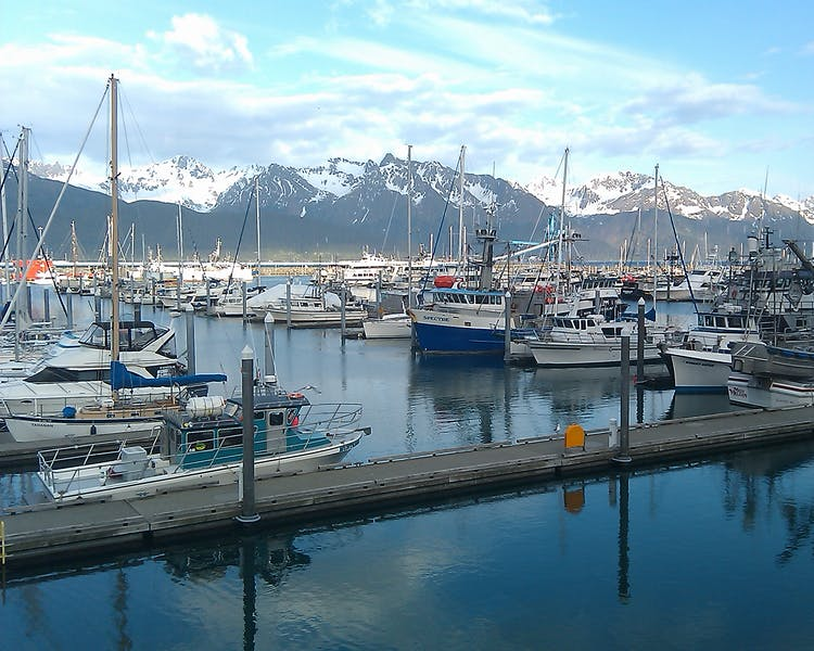 Small Boat Harbor in Seward