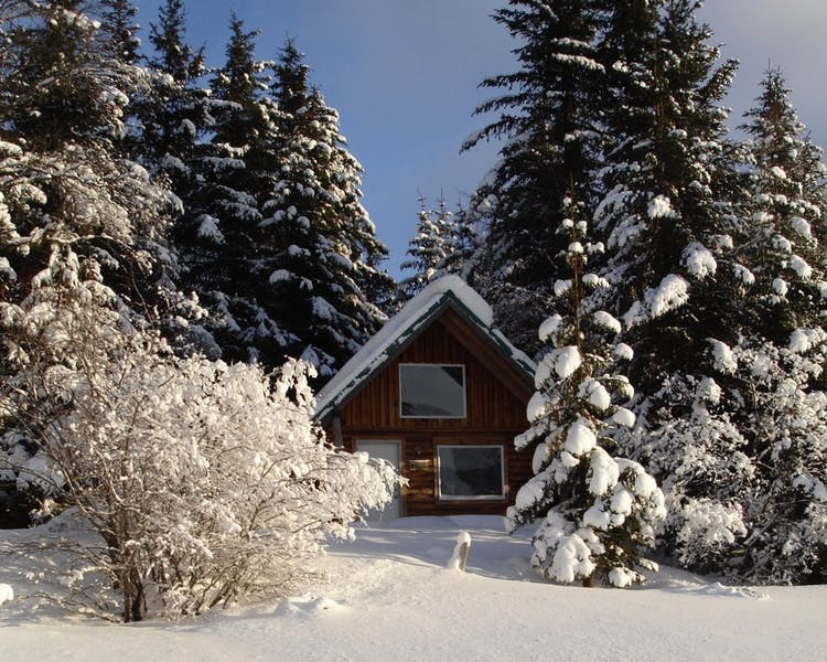Lakeview Cabin in Winter