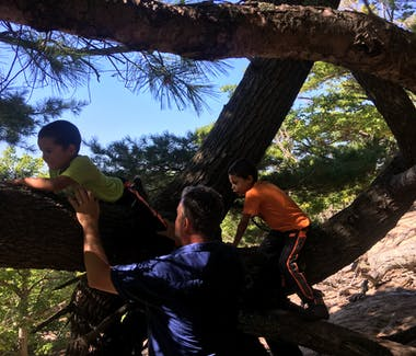 Ludington State Park - Family fun climbing in gnarly pine on Ridge Trail