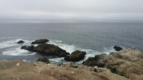 Pacific ocean, cliffs, hiking, bodega bay, bodega bay inn