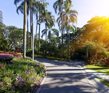 City Botanic Gardens Brisbane City Queensland