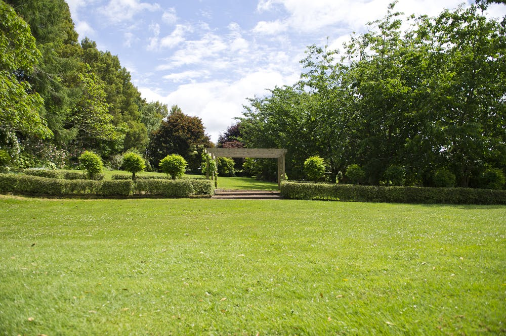 Stroll through the garden to see large specimen trees