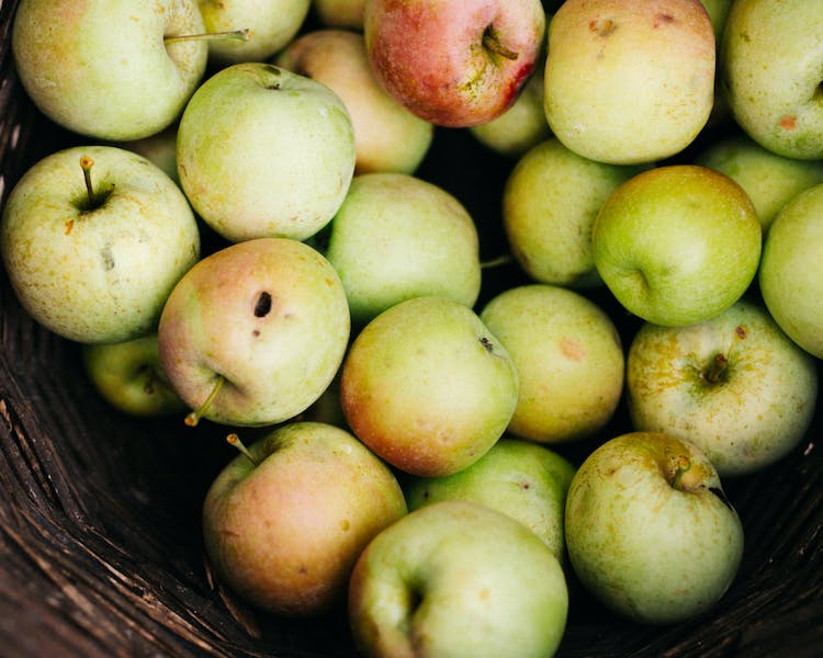 The Organic Apples from our Trees